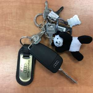 Lost: Set of keys with a small teddy panda attached (similar to the pic)